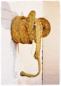 cabeza elefante lateral iluminoteca