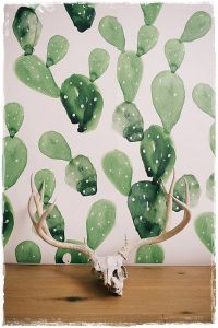 cactus_papel_pintado