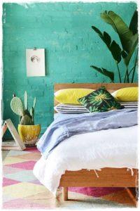 cactus_turquesa_habitacion
